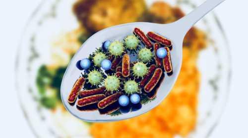 бактерии в кишечнике и боли в суставах: как они взаимосвязаны